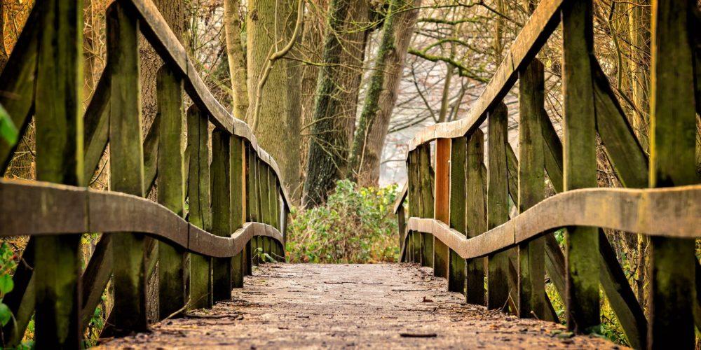 A Worthy Path